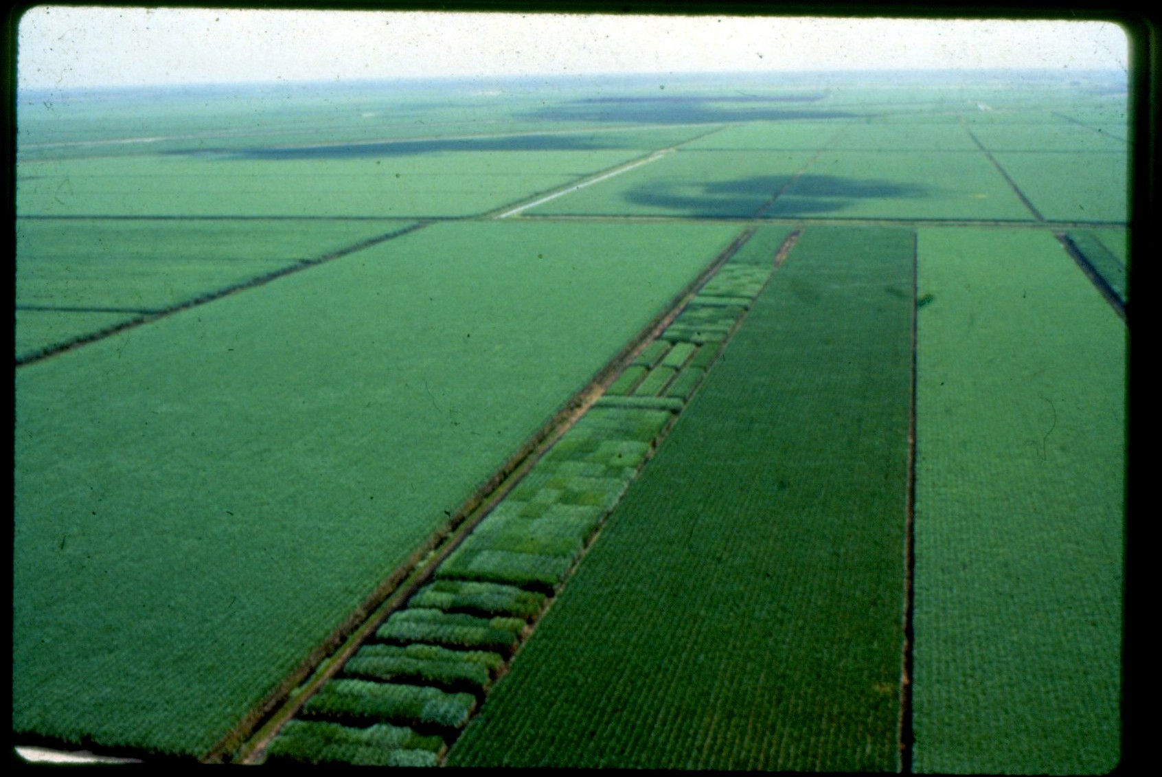 Conservationists Block Deal Between Sugar Companies And Water Management District