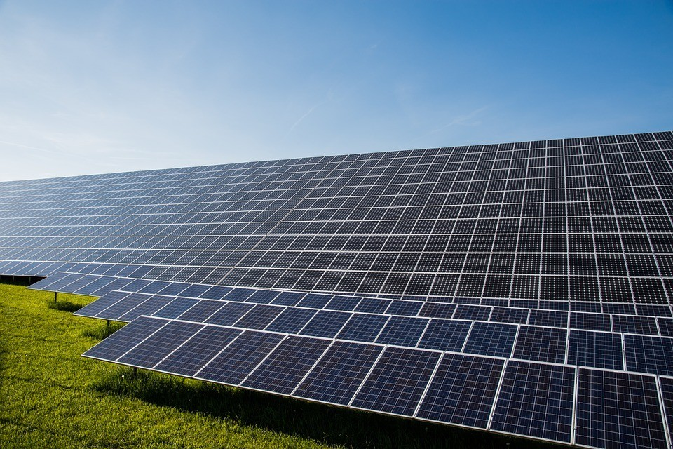 Florida Wildlife Federation Commends Commitment to Solar Power